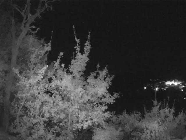 aura Webcam Grambois