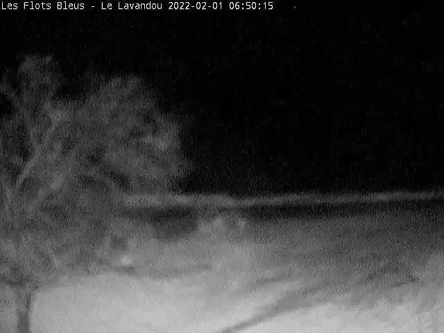 aura Webcam Le Lavandou
