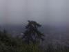 webcam Berchtesgaden (Lockstein)